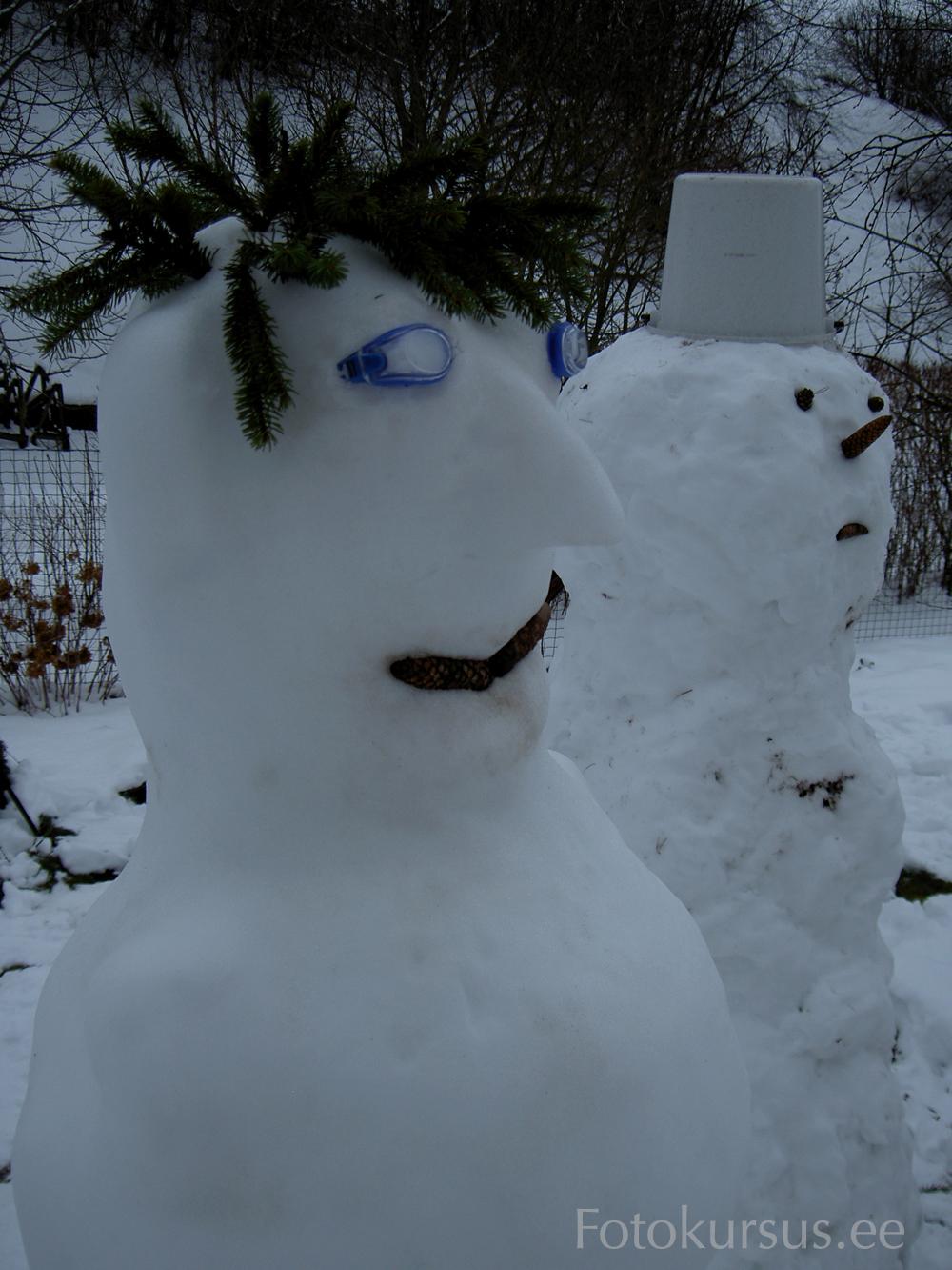 9916a8fd459 Sellise talvise lumememmestseeni korrigeerimiseks piisab tavaliselt  särikompensatsiooni