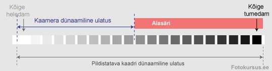 dyn-ul3