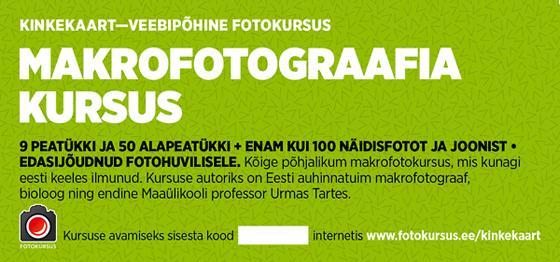 fotokursuse-kinkekaart-8