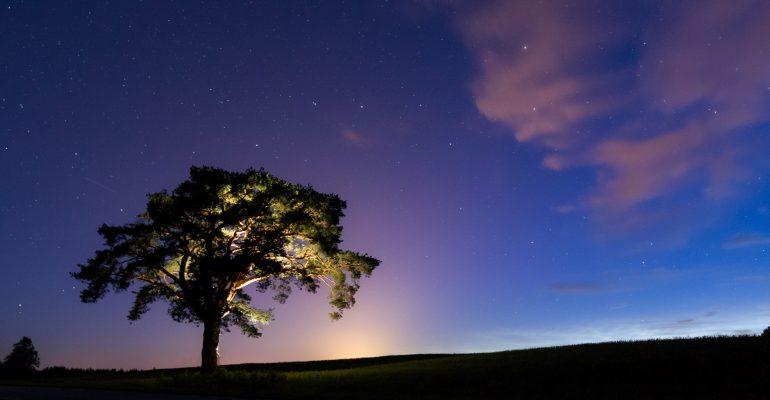 Pimedas pildistama: Ööfotograafia kursus ainult loetud päevad -10€